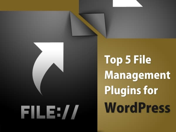 File management plugins for your WordPress content management needs