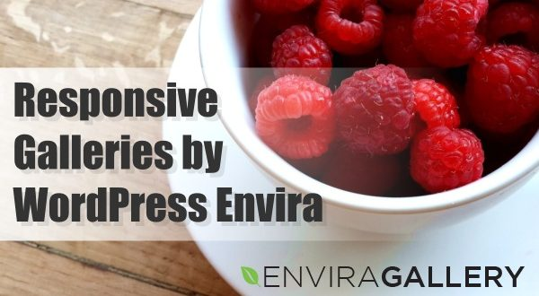 Create Beautiful Responsive Galleries with Wordpress Envira Plugin