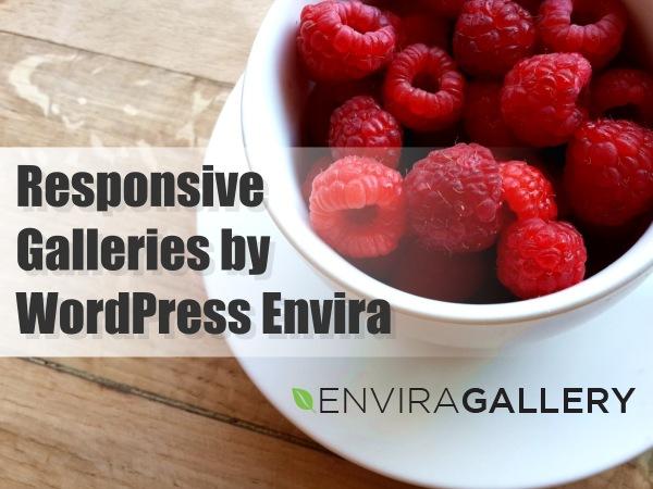 Create Beautiful Responsive Galleries with Wordpress Envira Plugin