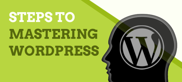 Steps to Mastering WordPress