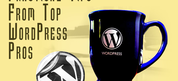 Practical Tips From Top WordPress Pros