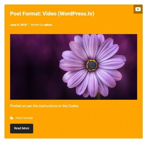 Video Post Format