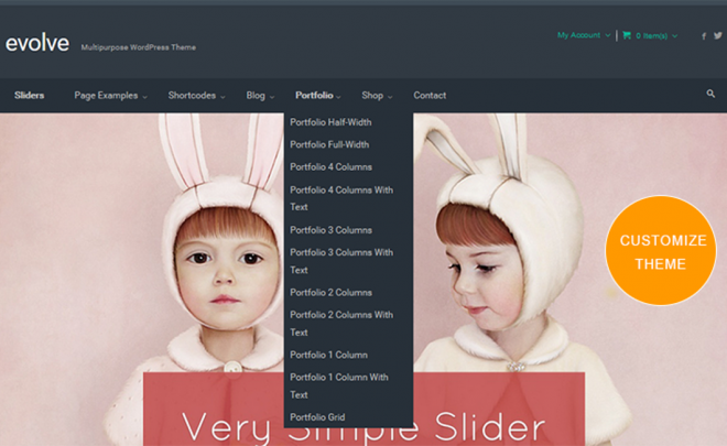 Customize WordPress Theme_Image