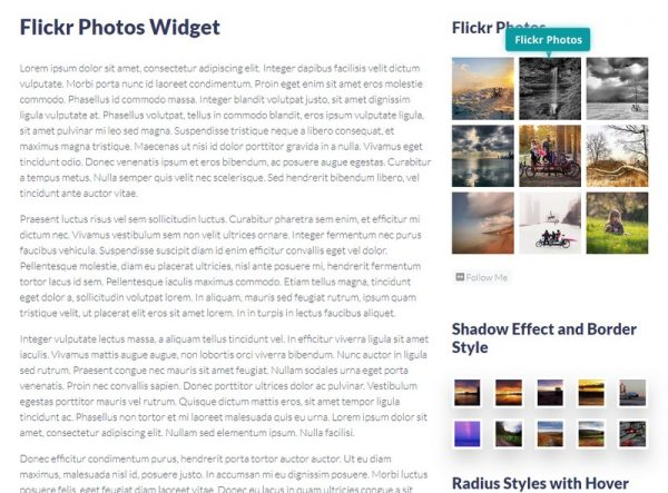 Flickr Photos Widget