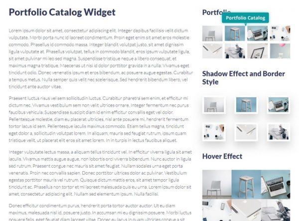 Portfolio Catalog Widget